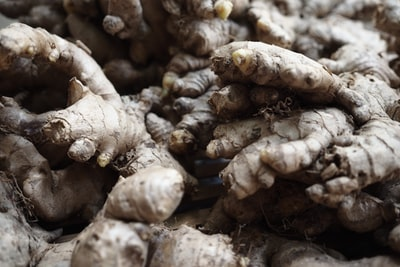How to find the best organic astrangalus for your home
